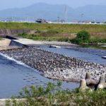 山辰組開発の魚道